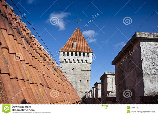 Castle roof and defence tower